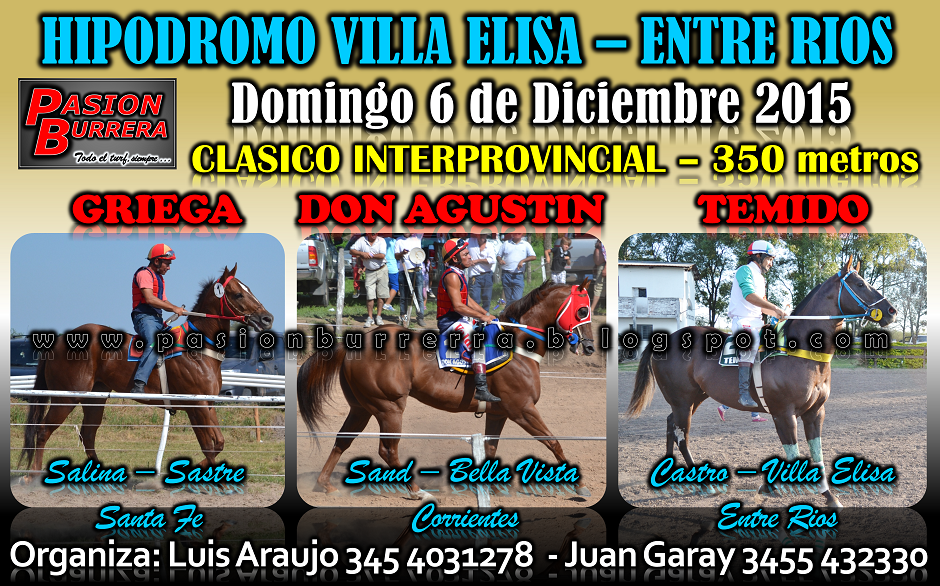 VIILA ELISA - 6 DIC - 350