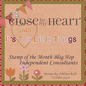 November SOTM It's The Little Things
