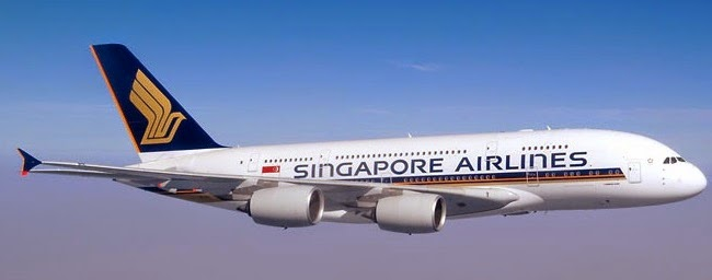 singapore airline pestle Through the years, we realise that pestel analysis that includes recent trends are almost always going to score high points for example, the introduction of the diesel duty of $010/litre in singapore is a recent trend that may be affecting the industry you are analysing.