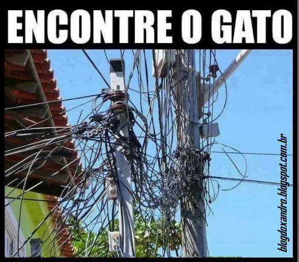 gato.png (586×513)