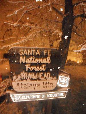 national forest sign snow