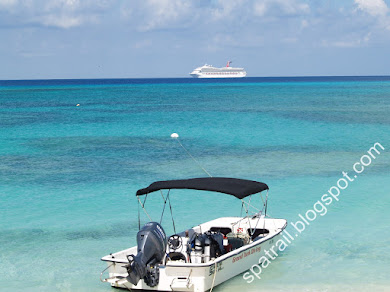 DIVE BOAT IN SHALLOWS; CRUISE-SHIP ON HORIZON
