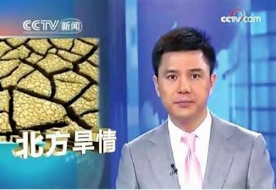 Zhao Pu