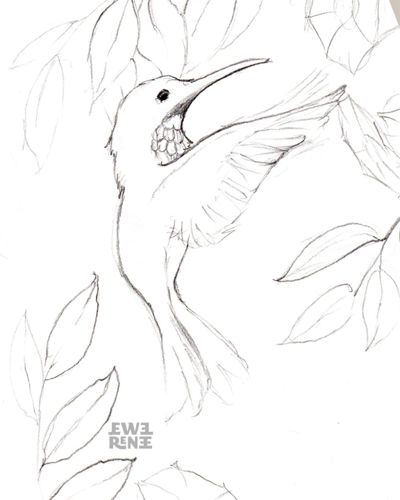 Line Art Birds : Jewel renee illustration birds for kathy s cottage
