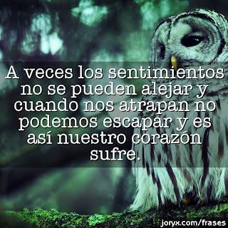 A veces los sentimientos no se pueden alejar y cuando nos atrapan no podemos escapar y es así nuestro corazón sufre.