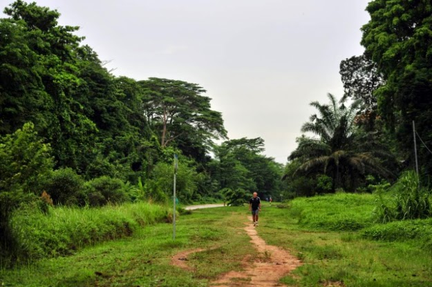 Hikers like this corridor when going to Bukit Timah Nature Reserve and its summit.