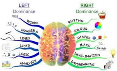 fungsi otak kanan dan fungsi otak kiri
