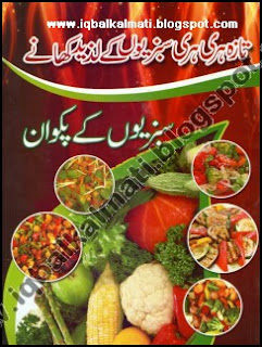 Pakistani Vegetables Recipes