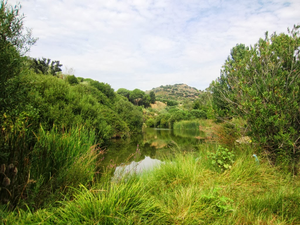 villaverde del rio sevilla: