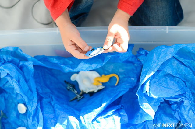 Playing with an ocean sensory bin from And Next Comes L