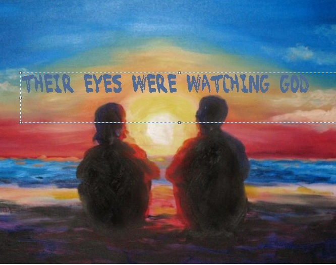 silence their eyes are watching god The paperback of the their eyes were watching god: a novel by zora neale hurston at barnes & noble free shipping on $25 or more.