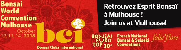 Bonsai World Convention Mulhouse 12-14 October 2018