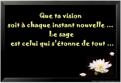 Citation sur sage en image