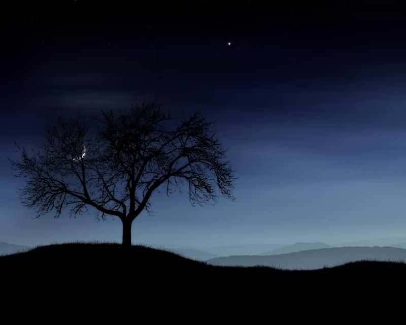 trees night moon blotch - photo #33