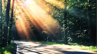 Sun Rise free background for desktop