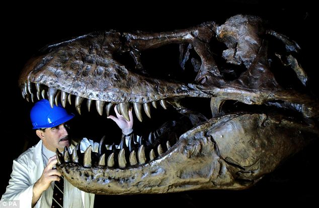 Y Were Dinosaurs So Big New study sheds light ...
