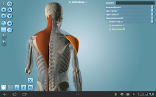 Anatomy 3D Pro - Anatronica v1.43 for Live walkman