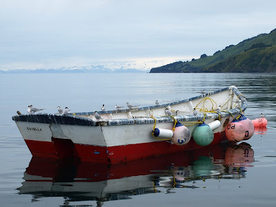 Kodiak gill-net site