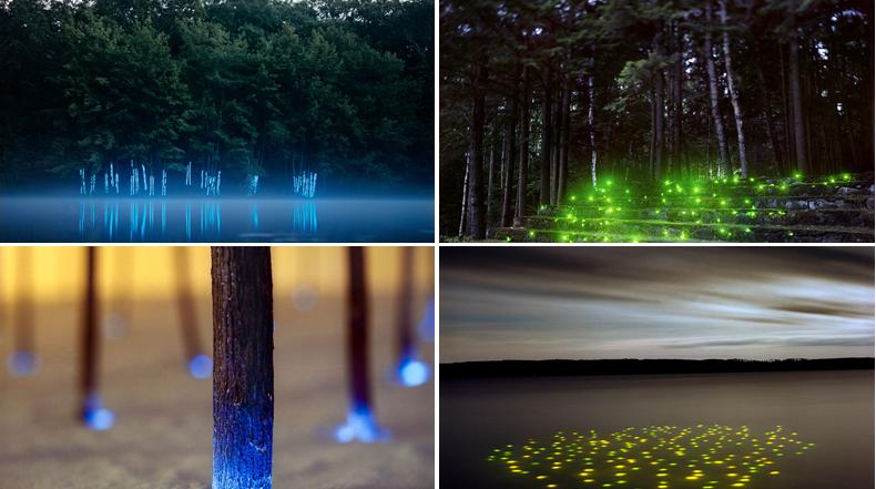 Paisajes de luz  abstractos de Barry Underwood