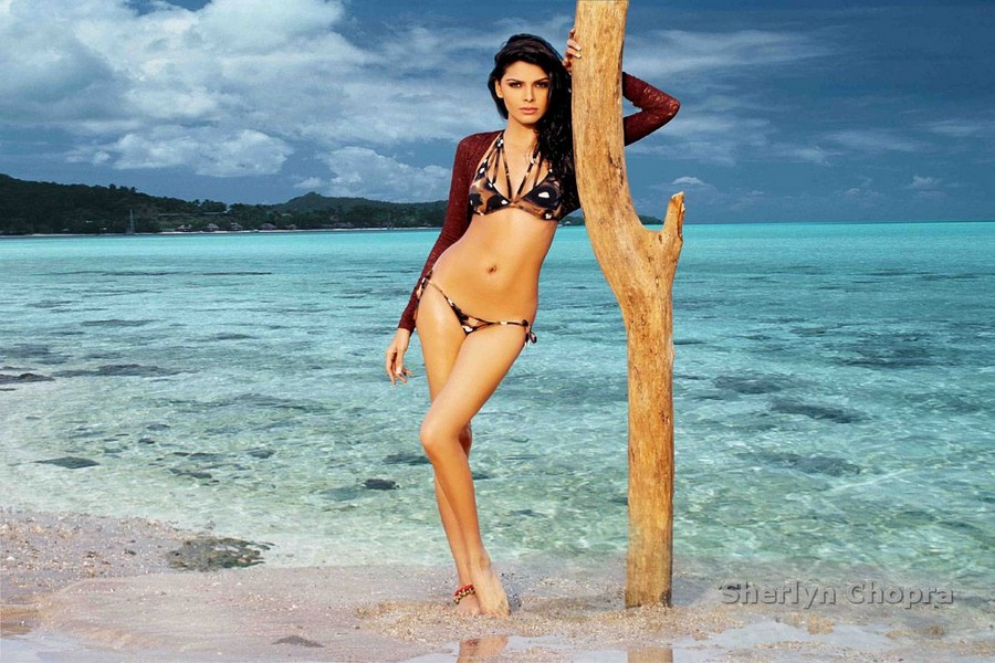 sherlyn chopra,sherlyn chopra hot,sherlyn chopra images,hot sherlyn chopra