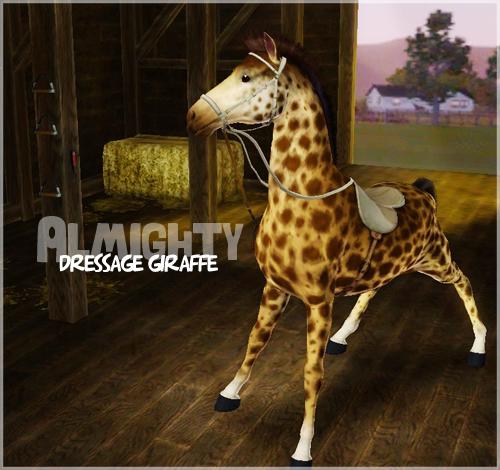 the almighty dressage giraffe