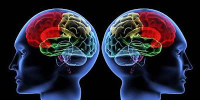 Kebiasaan Buruk Yang Bisa Merusak Otak