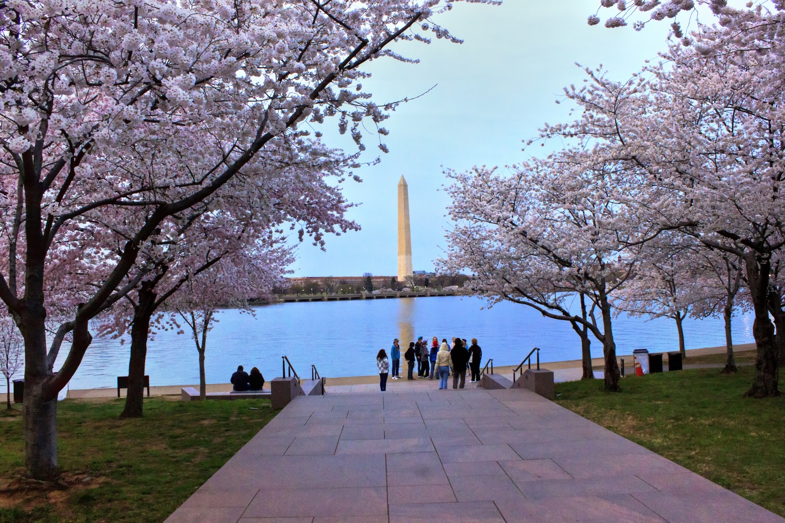 [Image: cherry+blossom+festival.jpg]