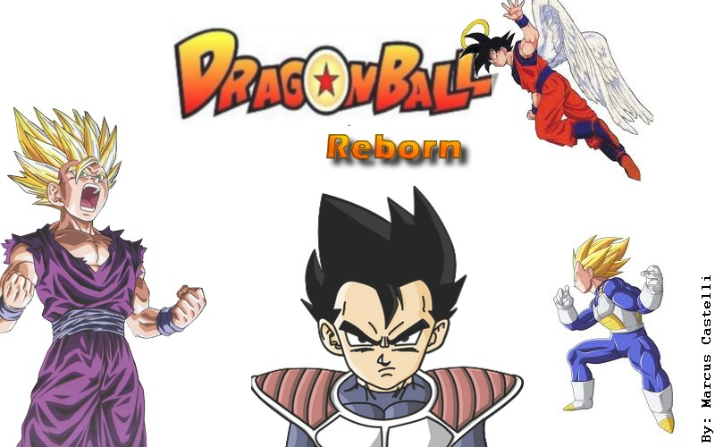 Dragon Ball Reborn (DBR)
