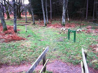 Walk into Torpantrick Wood on South Deeside