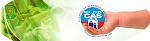 Visite o Site do Centro de Assistência Social da PMPE