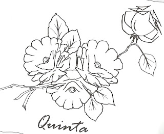 desenho de rosas