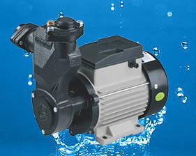Crompton Greaves Monoblock Pump Mini Pacific I (1HP) Water Pump Online, India - Pumpkart.com