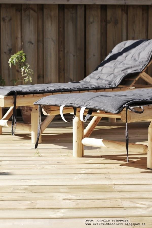 solsäng, solsängar, granit, trärena utemöbler, utemöbel, sängar, solstol, solstolar, uteplats, uteplatsen, trädäck, trädäcket, altan, altanen, utomhus, outside, outdoors,