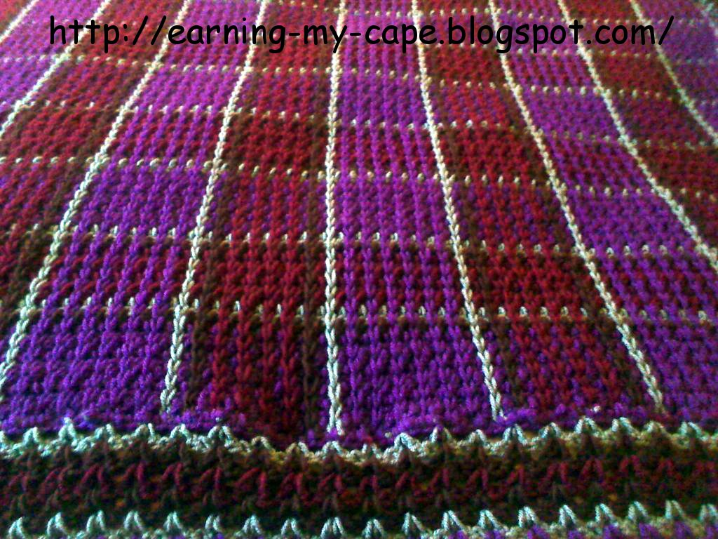 Earning-My-Cape: Crochet Plaid Blanket (Free Pattern)