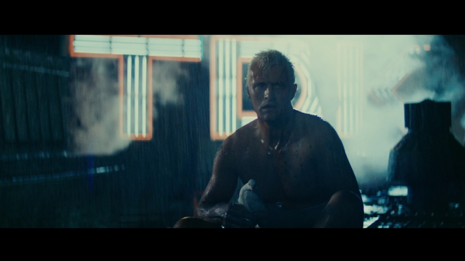 narrative in blade runner The blade runner game, then, can be thought of as caught in acontradictory position in its negotiation of the opposition between interactive liberty and narrative prescription, a position that opens up the possibility of a critique.