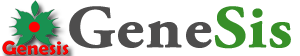 Genesis Bengkulu