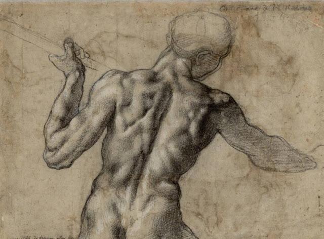 dibujo antatómico de espalada Miguel Angel