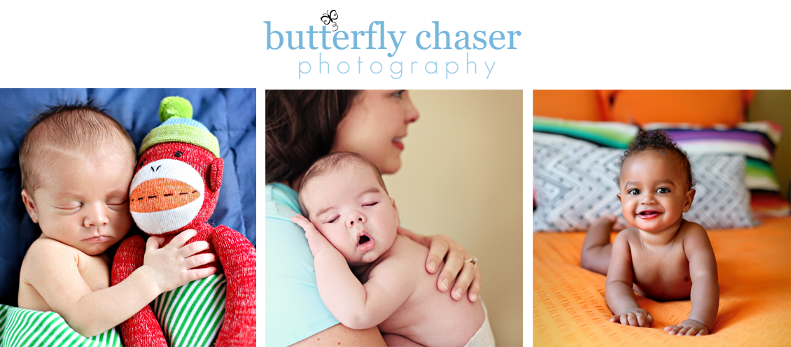 Butterfly Chaser Photography