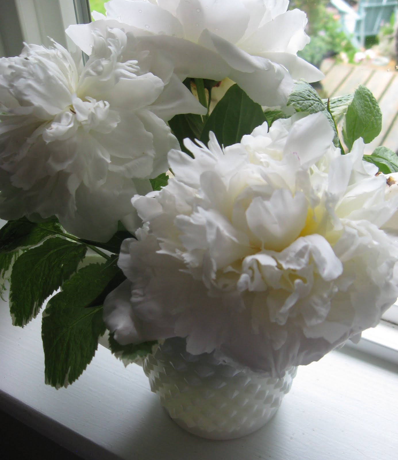 Good morning tinkerhouse trading company i did get to pick my very first flowers this morning white peonies mightylinksfo