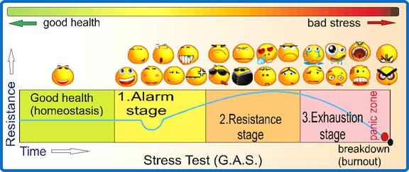 stress test management, Skeleton