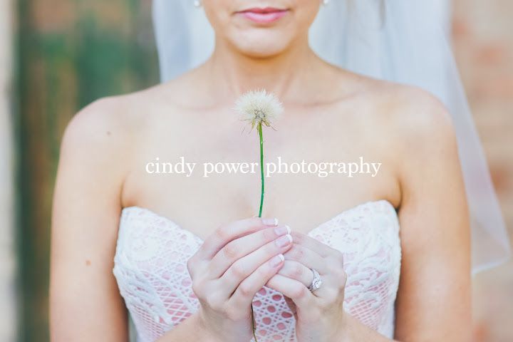 Cindy Power Photography