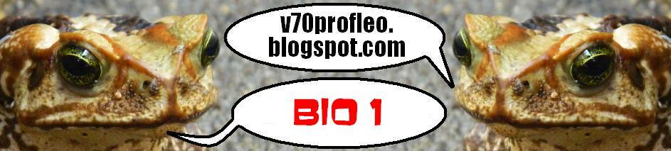 v70profleo-bio1.blogspot.com