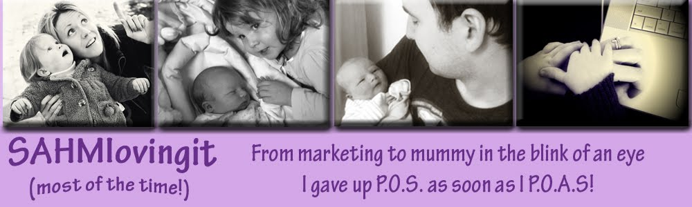 Stay At Home Mum Loving It Blog - From Marketing to Mummy in the blink of an eye!
