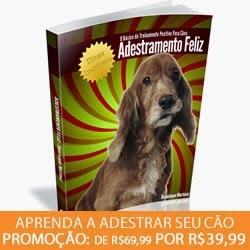 http://questoeseargumentos.blogspot.com.br/2014/10/adestramento-feliz-o-basico-do.html
