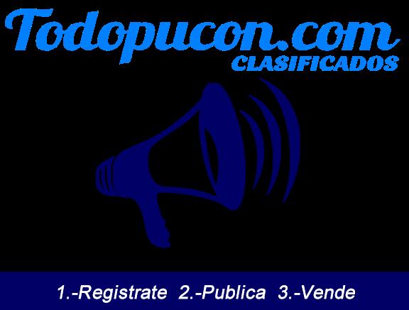 todopucon.com