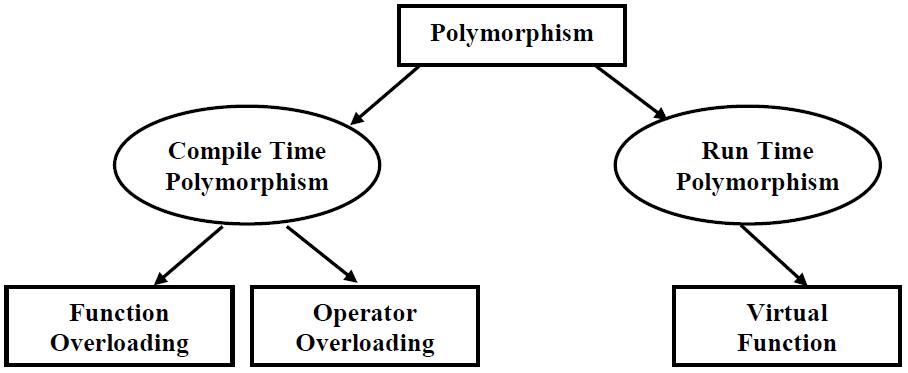 what is polymorphism in oop