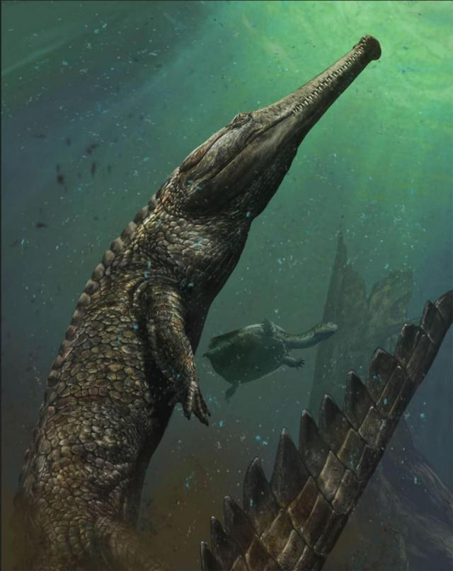 http://1.bp.blogspot.com/-PFuKmfPItuE/VpaHDRbPgTI/AAAAAAAA0qU/uUn0HIUqfq4/s1600/small-machimosaurus-rex.jpg