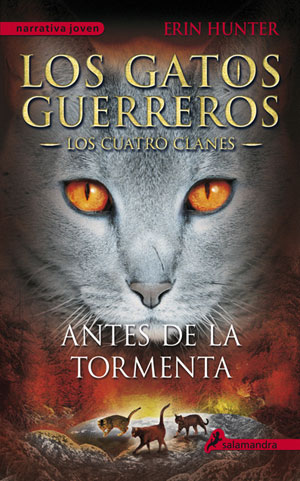 Los Gatos Guerreros IV - Antes de la tormenta