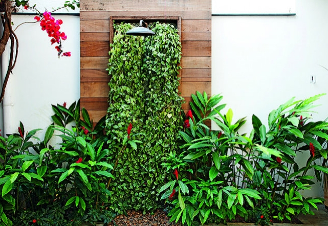 jardim vertical latas: jardim, pode também utilizar idéias como: plantas em latas de