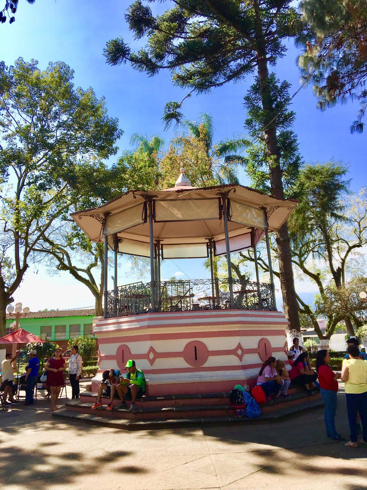 Visita el municipio de Teocelo Ver.